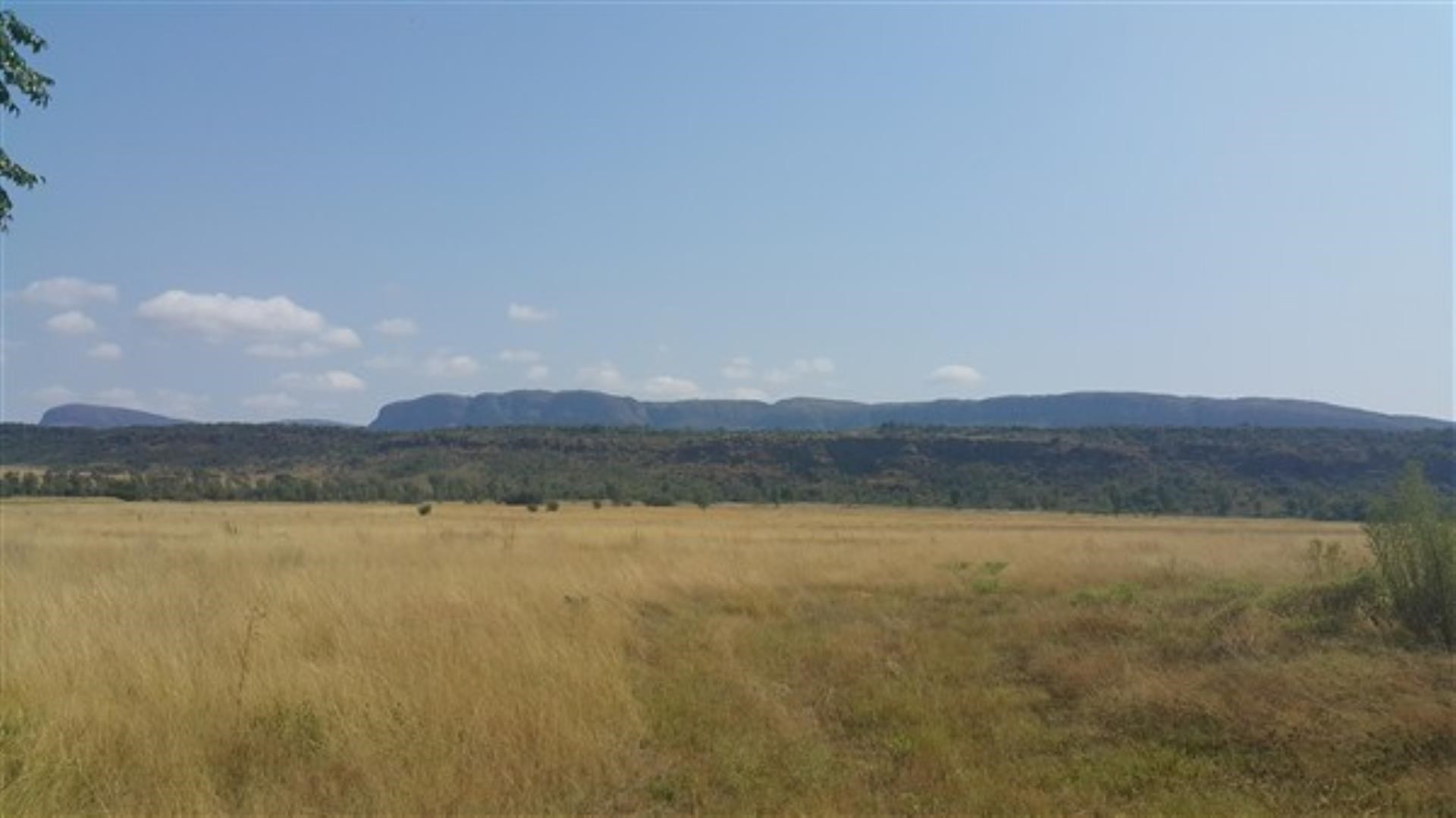 5 Bedroom Farm for Sale in Vaalwater