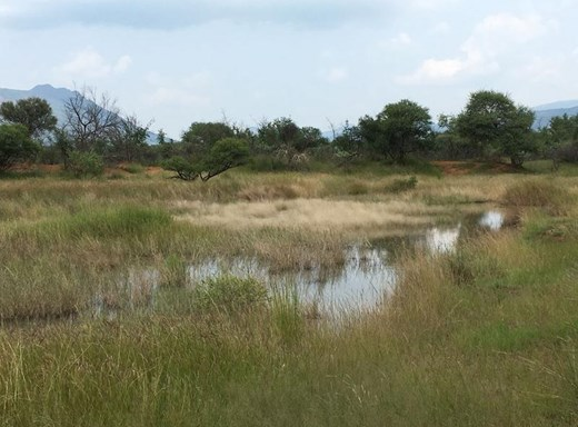Small Holding for Sale in Thabazimbi