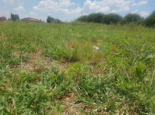 Vacant Land for Sale in Baillie Park