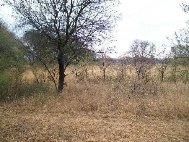 Vacant Land for Sale in Modimolle