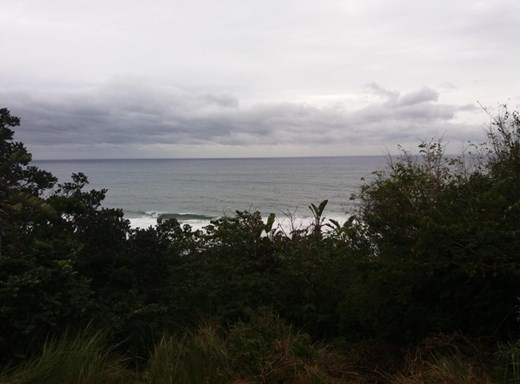 Vacant Land for Sale in Blythedale
