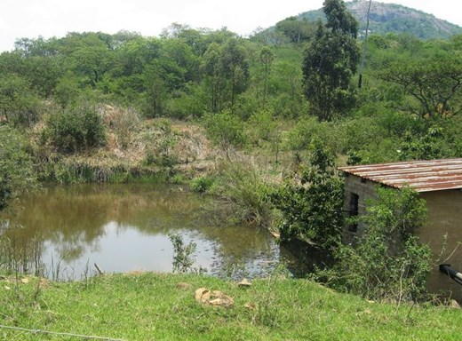 5 Bedroom Farm for Sale in Nelspruit