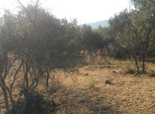 Vacant Land for Sale in K'Shane