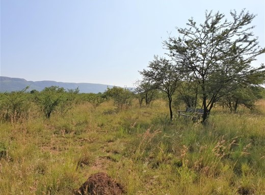 Vacant Land for Sale in La Camargue Private Country Estate
