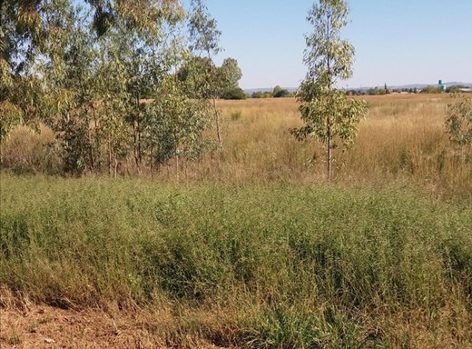 Vacant Land for Sale in Vyfhoek