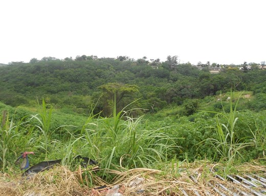 Vacant Land for Sale in Malvern
