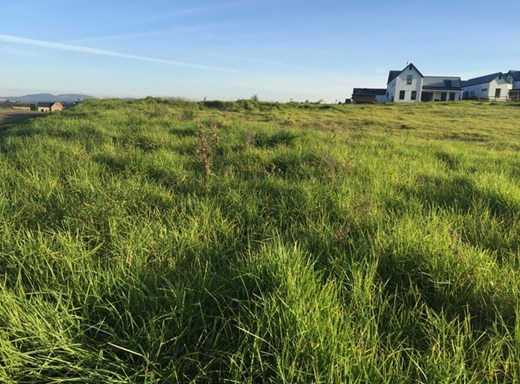 Vacant Land for Sale in Howick