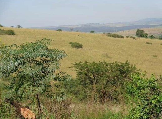 Vacant Land for Sale in Cato Ridge
