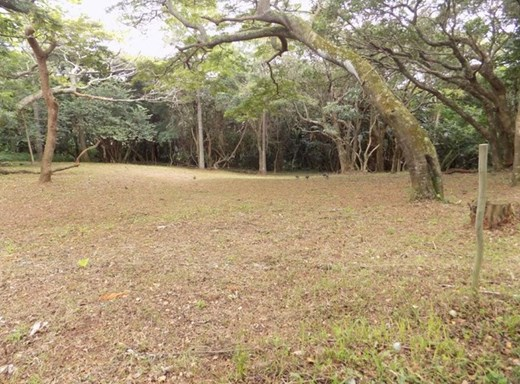 Vacant Land for Sale in Woodgrange