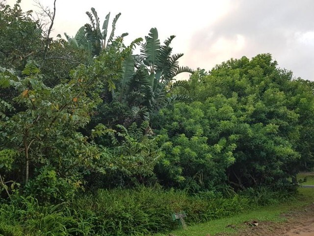 Vacant Land for Sale in Munster