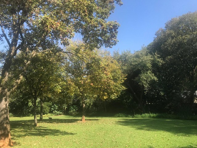 Vacant Land for Sale in Saxonwold