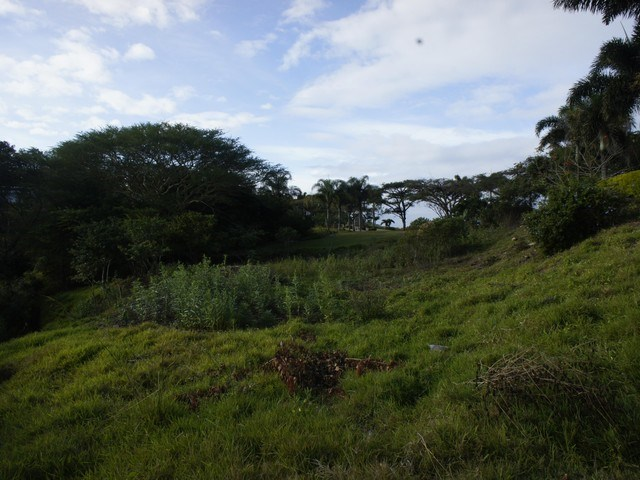 Vacant Land for Sale in Palm Lakes Estate