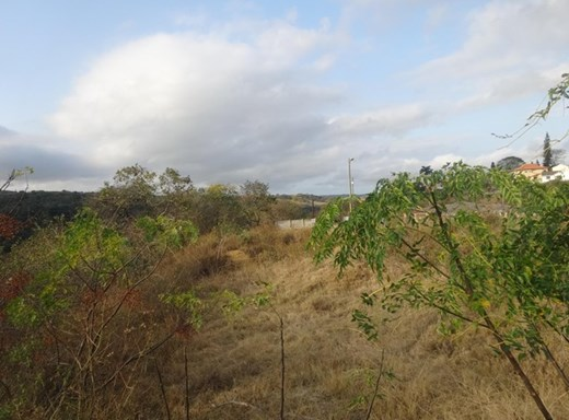 Vacant Land for Sale in Escombe