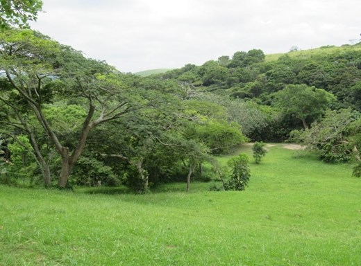 Vacant Land for Sale in Umtentweni