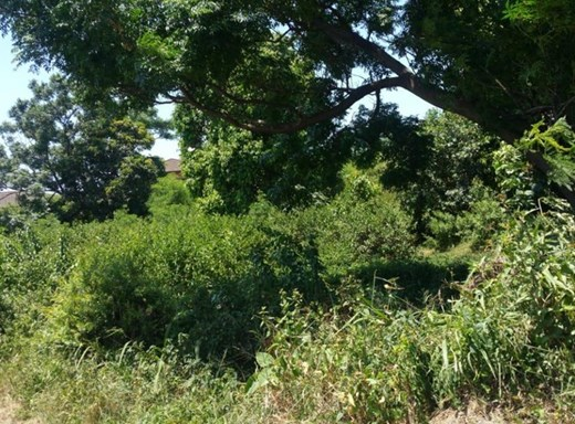 Vacant Land for Sale in Cato Manor