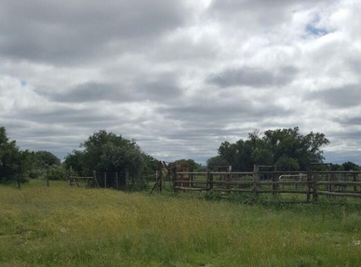 Farm for Sale in Campbell