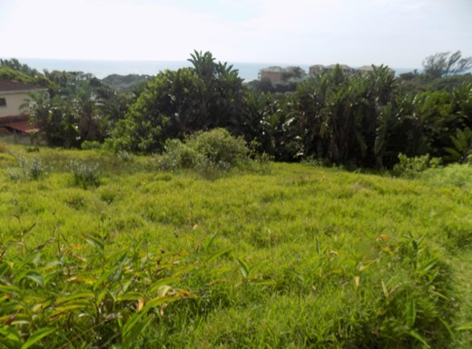 Vacant Land for Sale in Trafalgar