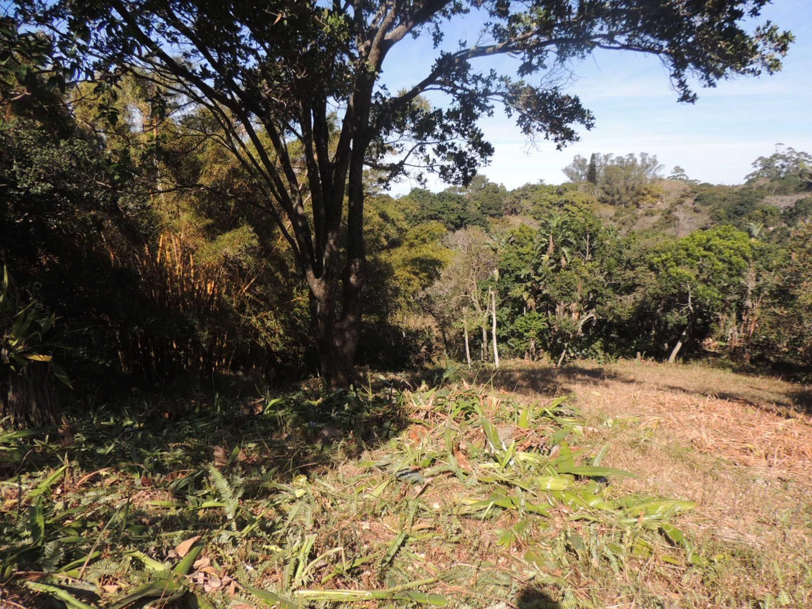 Vacant Land for Sale in Southbroom