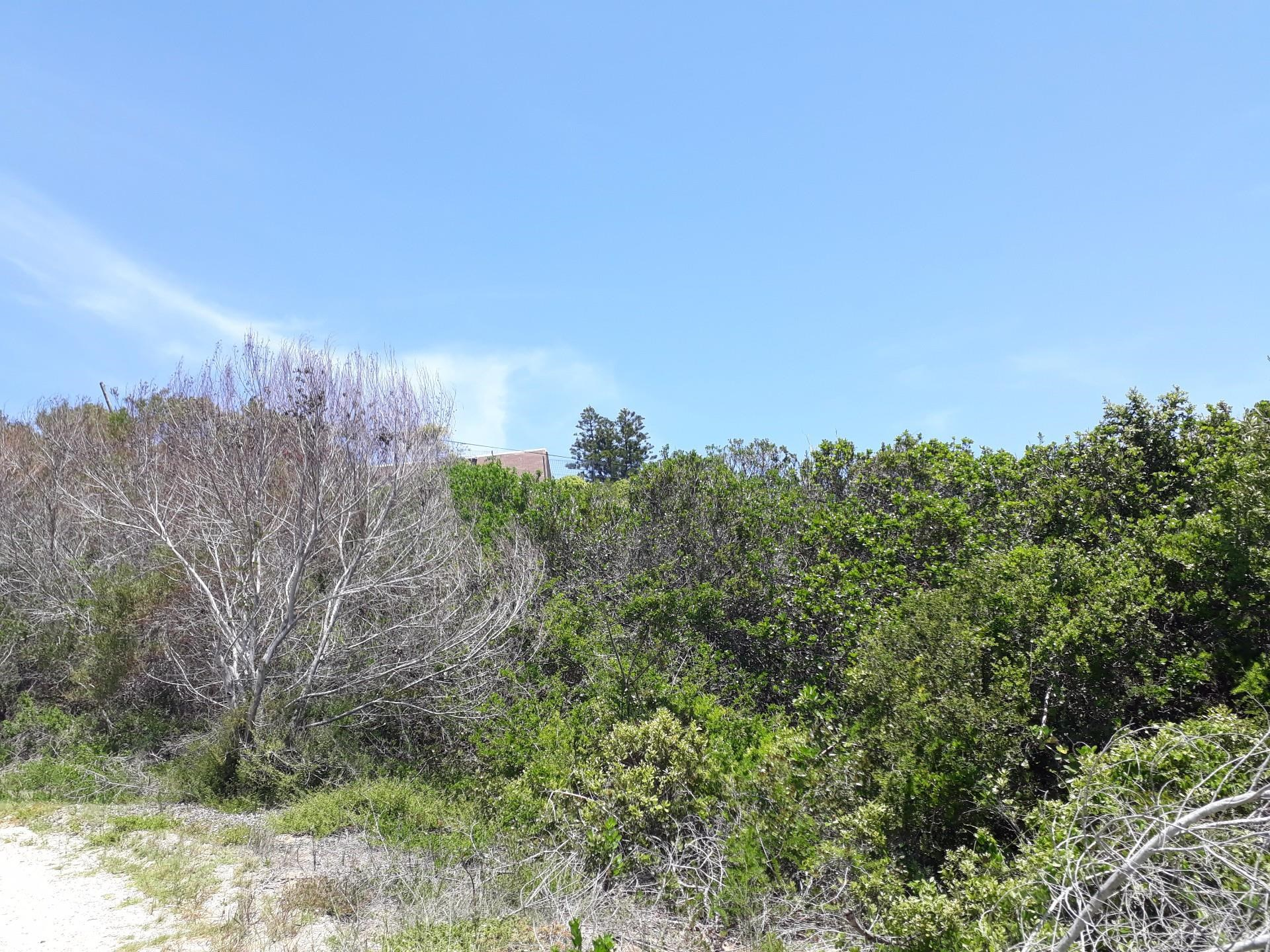 Vacant Land for Sale in Wilderness Central
