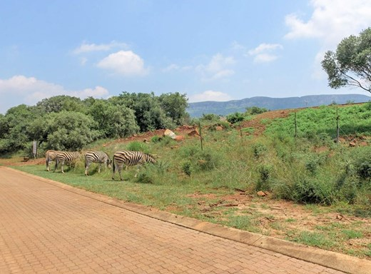 Vacant Land for Sale in Leloko Lifestyle & Eco Estate