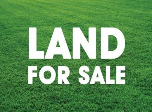 Vacant Land for Sale in Albersville