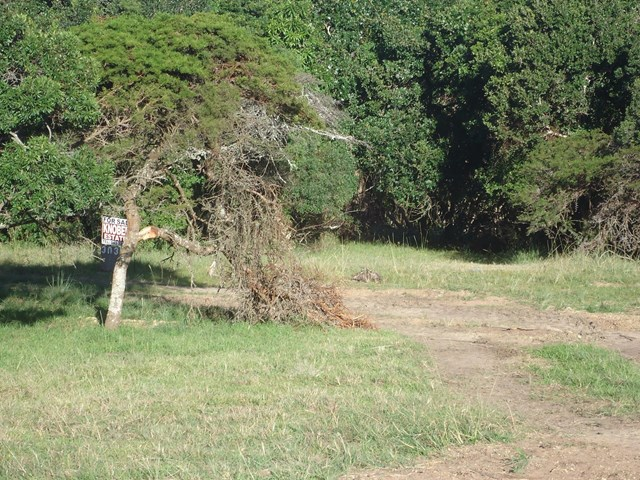 Cove Rock Vacant Land For Sale