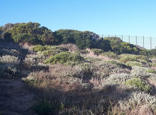 Vacant Land for Sale in Still Bay East