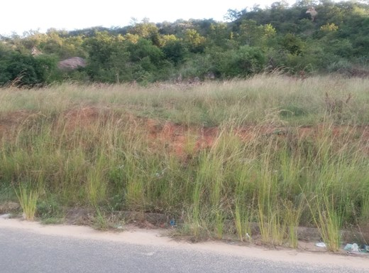 Vacant Land for Sale in Kamagugu