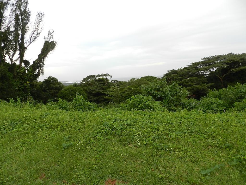Vacant Land for Sale in Mtunzini