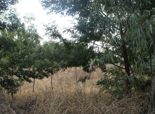 Vacant Land for Sale in Tyger Valley