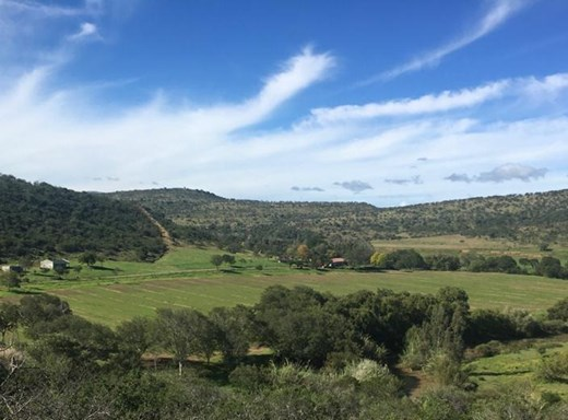 4 Bedroom Farm for Sale in Adelaide