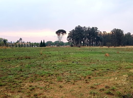 Vacant Land for Sale in Blue Saddle Ranches