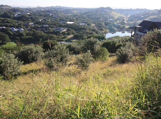 Vacant Land for Sale in Simbithi Eco Estate