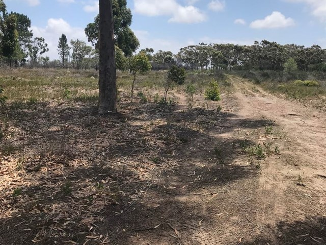 Greenbushes Vacant Land For Sale