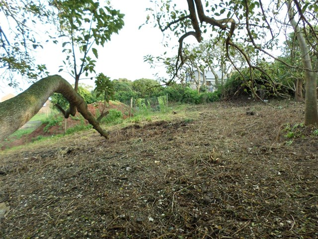 East Bank Vacant Land For Sale