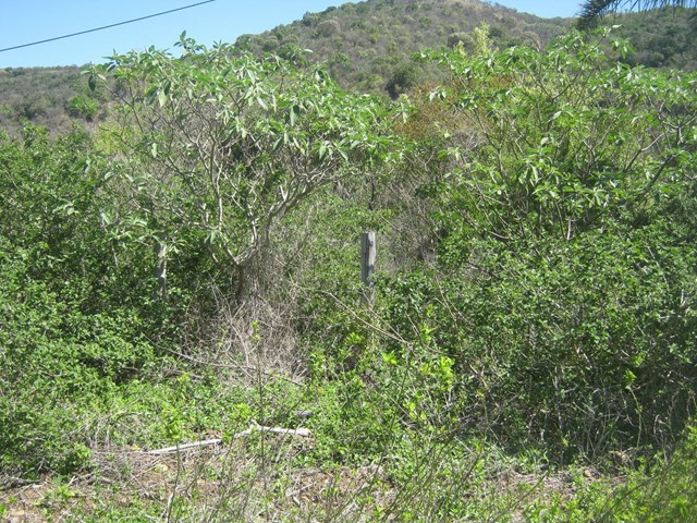 Nahoon Valley Vacant Land For Sale