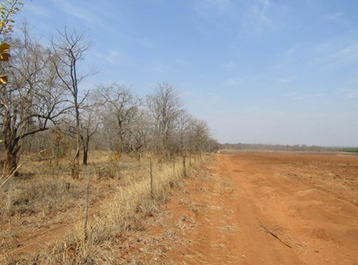 Vacant Land for Sale in Phalaborwa