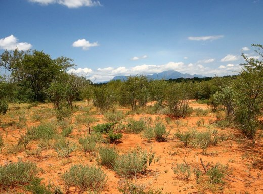 Vacant Land for Sale in Raptors View