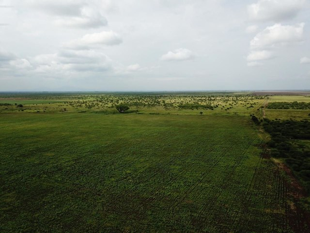 Roedtan Vacant Land For Sale